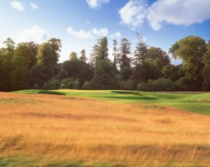 Image of the 12th green and forest on the Montgomerie Course, Carton House, Dublin Area, Ireland