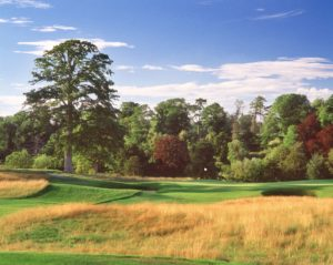 Image of the 17th hole on the Montgomerie Course, Carton House, Dublin Area, Ireland