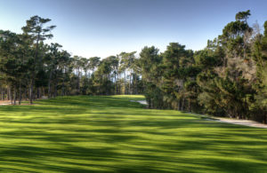 Image looking up the hill on the 1st hole at Poppy Hills Golf Course, Pebble Beach, USA